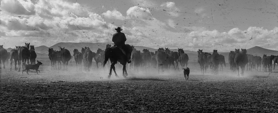 The American West Film